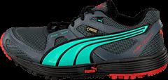 Puma - Pumafox V2 Gtx Turbulence