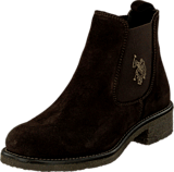 U.S. Polo Assn - Faris 1 Suede Dark Brown