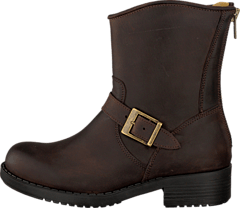 Johnny Bulls - Low Boot Zip Back Brown/Gold