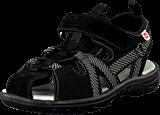 Pax - Hawker Black