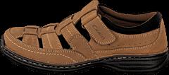 Cavalet - 809-83057 Brown