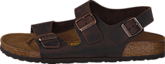 Birkenstock - Milano Slim Leather Habana